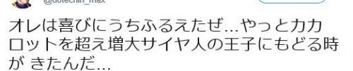 ヴィトックスα口コミ③