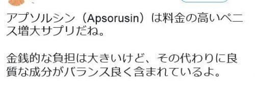 アプソルシン口コミ②